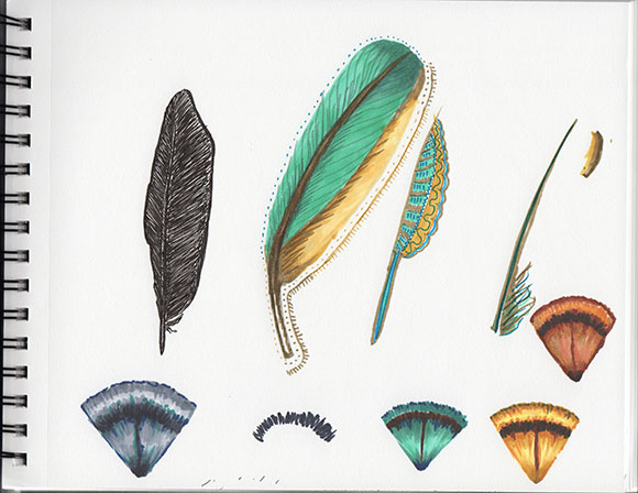 Intermediate Track, Brief 3, Feathers with color by Jessica Southwick